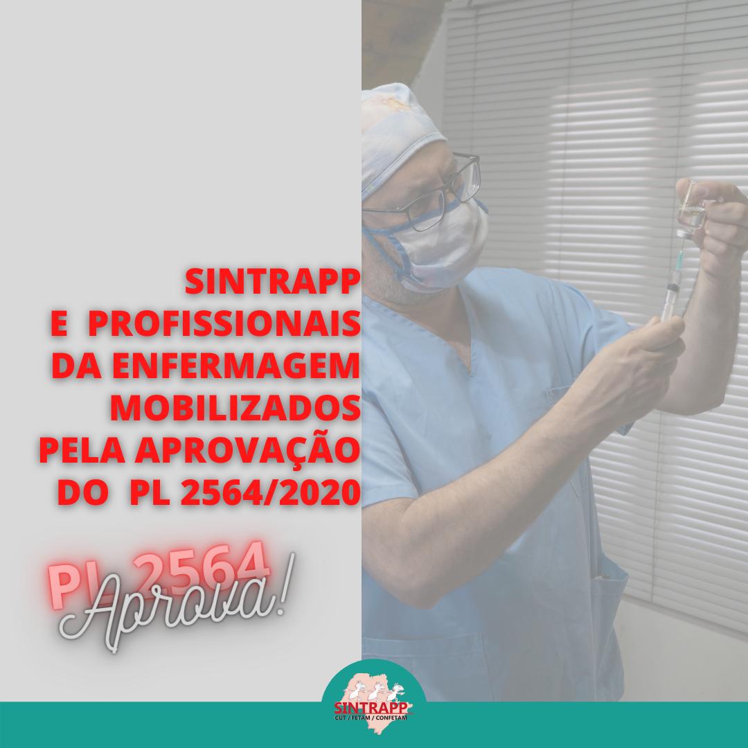 Sintrapp junto aos profissionais da saúde em luta pela aprovação do PL 2564